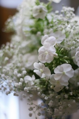 bouquet gypsophile La-mariee-aux-pieds-nus