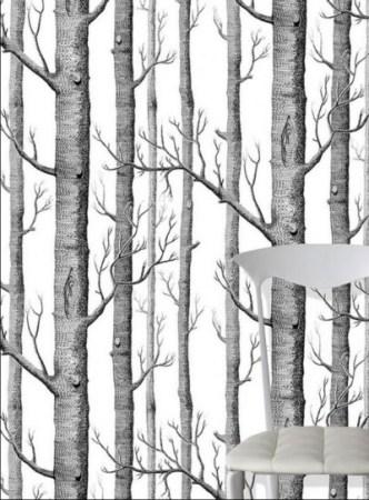 PP_Birch-forest_bouleaux_PP70