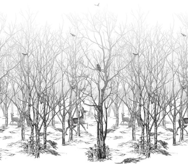 Panoramique_foret-enchantee_Isidore-Leroy