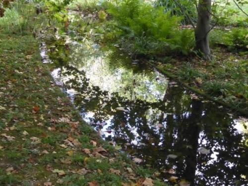 2019-10_Jardins-A-Kahn_jardin-anglais_riviere