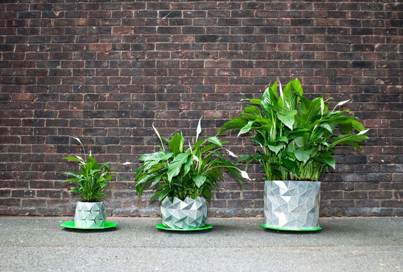 Crush | GROWTH, le pot qui pousse en même temps que votre plante !