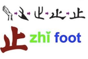 Pictogram of 止 foot