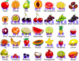 Names of fruits