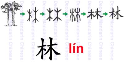 林, a pictographic character of forest, serves as phonetic component to form characters. Characters formed by the sematic component 林 have to do with tree.