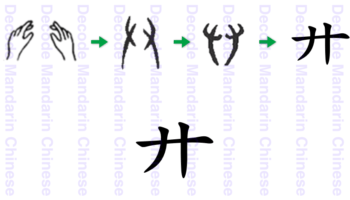 Component 廾, 手 hand V