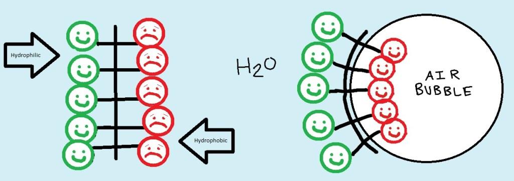 Hydrophilic & phobic behavior in foam