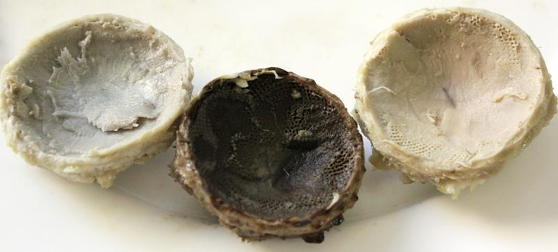 Artichoke hearts - smoke damage