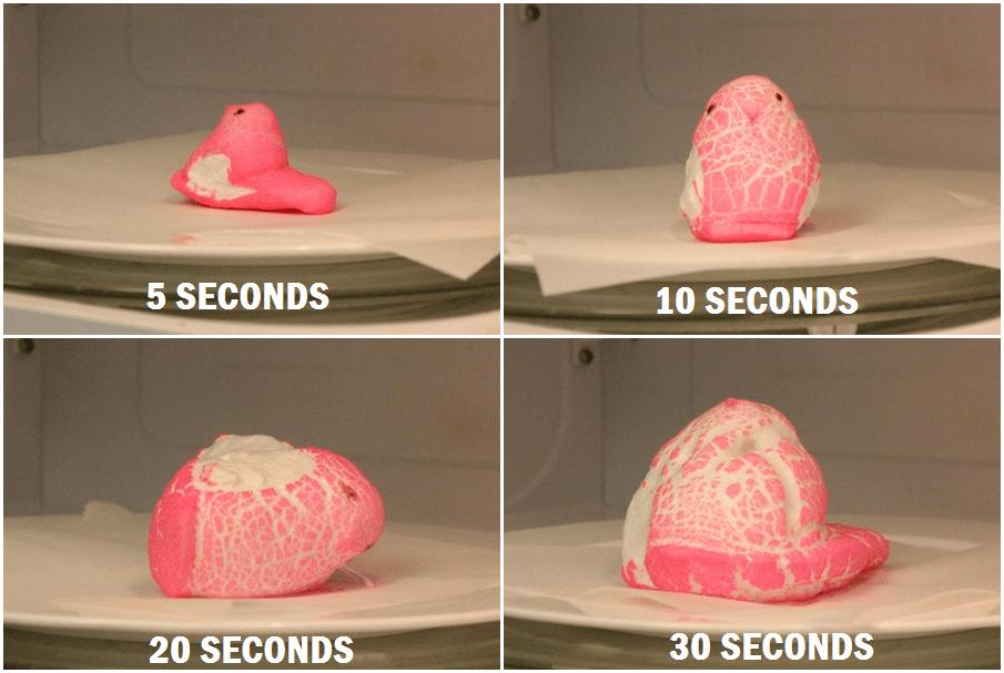 Marshmallow Peep Time Montage