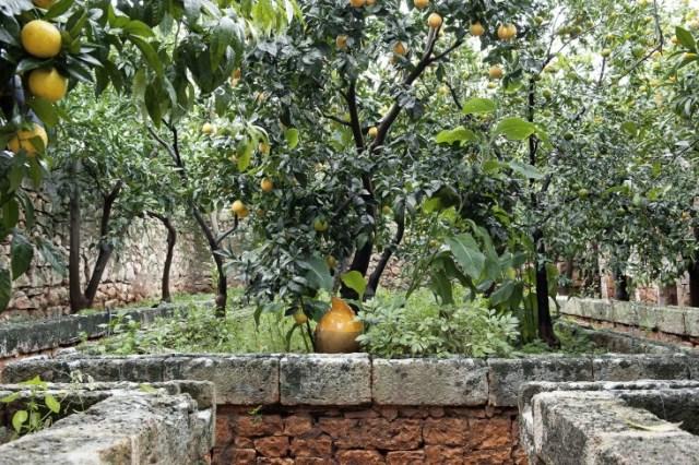 italian farmhouse (9)