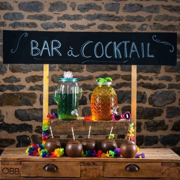 Location-Bar-Hawai-noix-de-coco-B