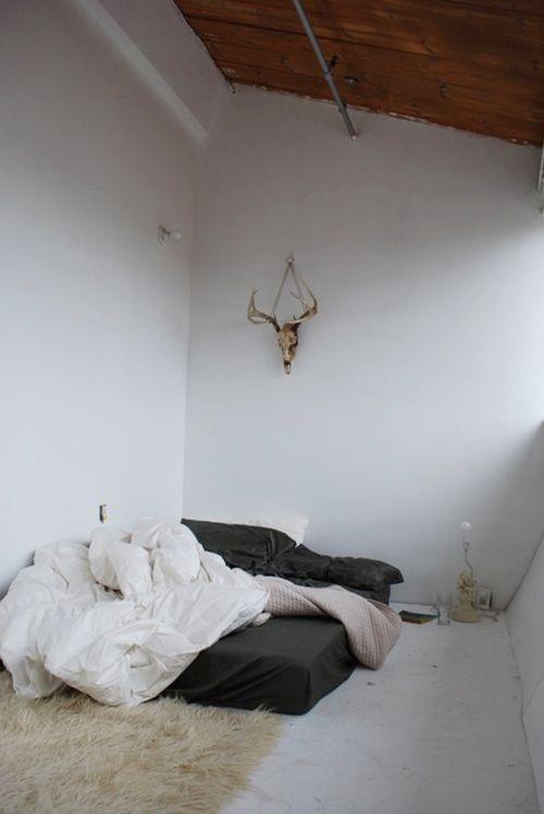 Ideas para decorar paredes con trofeos de caza 6