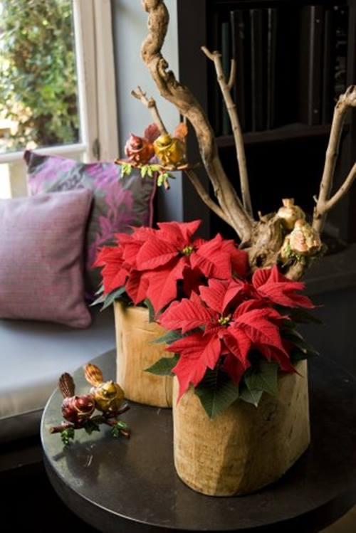Decoracion navideña con flor de pascua de estilo vintage 3