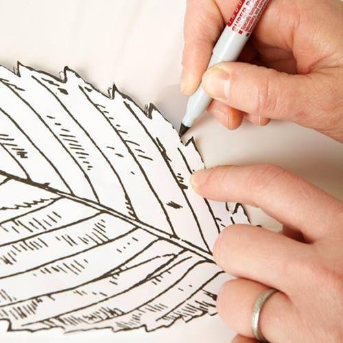 Hacer cuadros decorativos con hojas secas 3