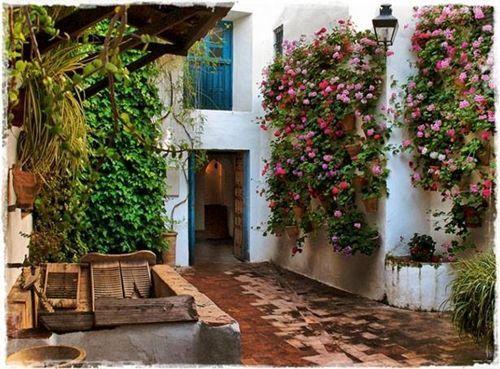 Los patios de c rdoba m s bellos otra vez en flor for Patio con lavadero