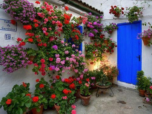 patio cordobés en flor con contraste de colores