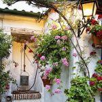 Los patios de Córdoba más bellos, otra vez en flor