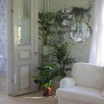 ¡Mi casa, mi selva! 20 ideas para decorar con plantas de interior 13
