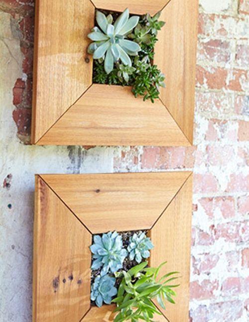 Decorar terrazas pequeñas mini jardín vertical de plantas crasas 10