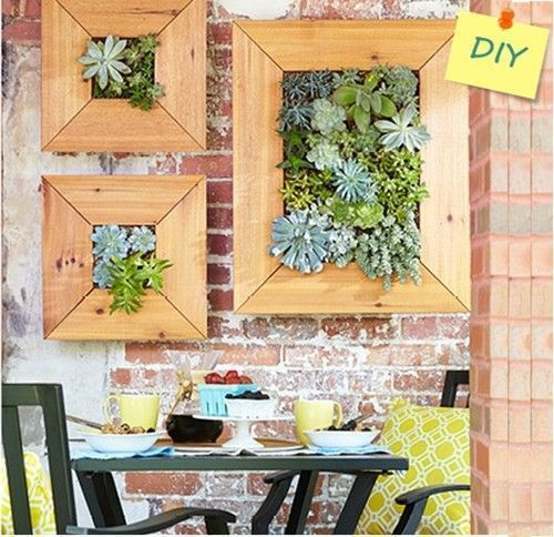 decorar terrazas pequeas mini jardin vertical de plantas crasas