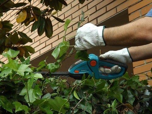 Herramientas de jardinería para podar fácilmente setos y trepadoras 7