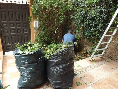 Herramientas de jardinería para podar fácilmente setos y trepadoras 8
