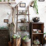 Los 25 rincones con plantas de interior más bellos de Pinterest 1