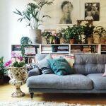 Los 25 rincones con plantas de interior más bellos de Pinterest 16