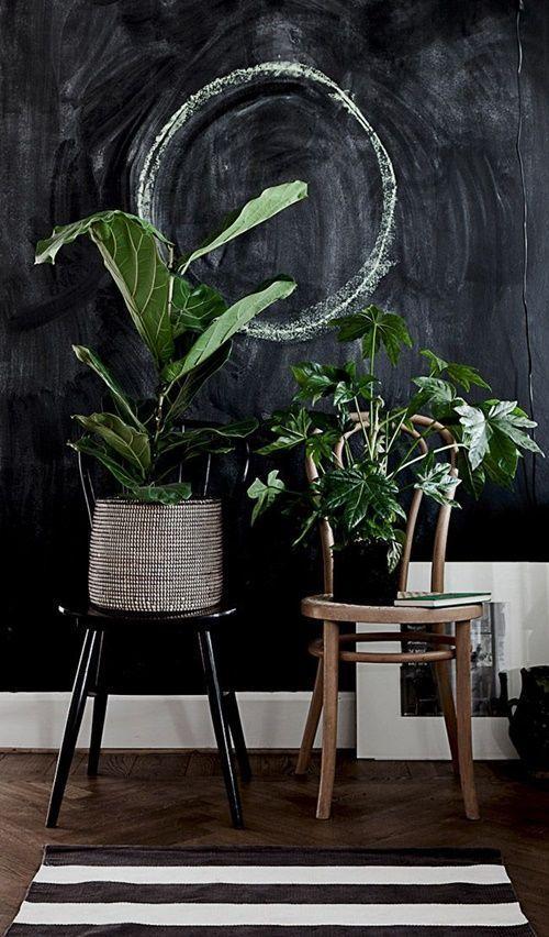 Los 25 rincones con plantas de interior más bellos de Pinterest 19