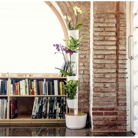 Jard n vertical o colgante en casa con curiosos sistemas - Jardin con macetas ...