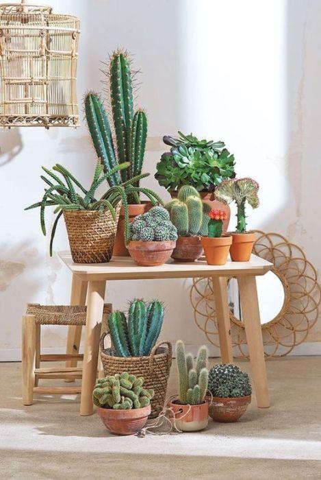 Decorar con plantas artificiales haciendo colecciones de suculentas.