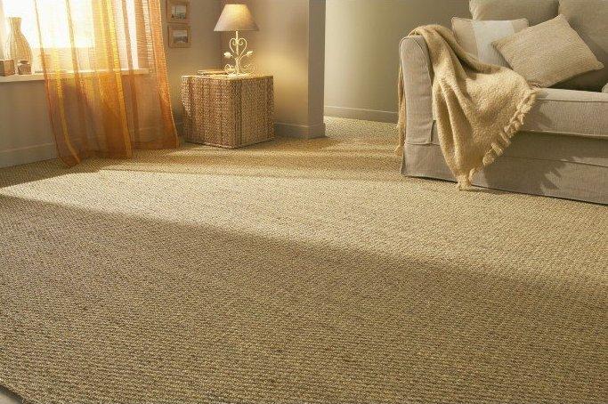 tapis salon grande taille pas cher