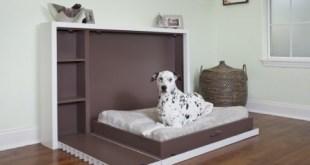 Las camas de nuestra mascota en casa