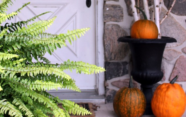 Fall Porch at the Farm