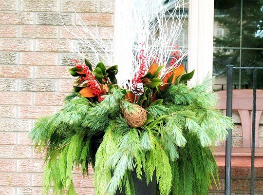 Christmas outdoor urns and a few surprises