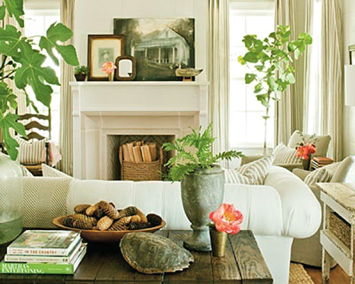 decorar-relajante-flores-plantas