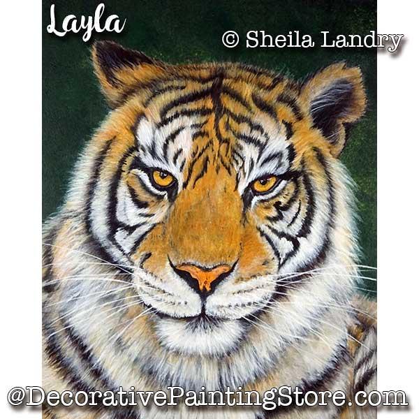 LAS18241web-Layla-Tiger