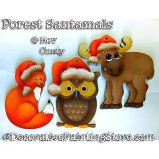 CAB18011web-Forest-Santamals