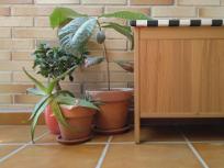 limpiar el suelo exterior para disfrutar de tu terraza, balcón o patio - limpieza de primavera - junio relimpito