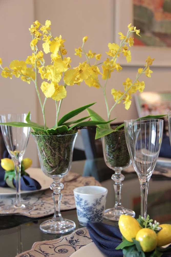 A orquídea Chuva de Ouro é popular pela sua beleza delicada, alegre e, claro, pelo tom amarelo dourado de suas flores, o que a torna um espetáculo para decorações de interiores