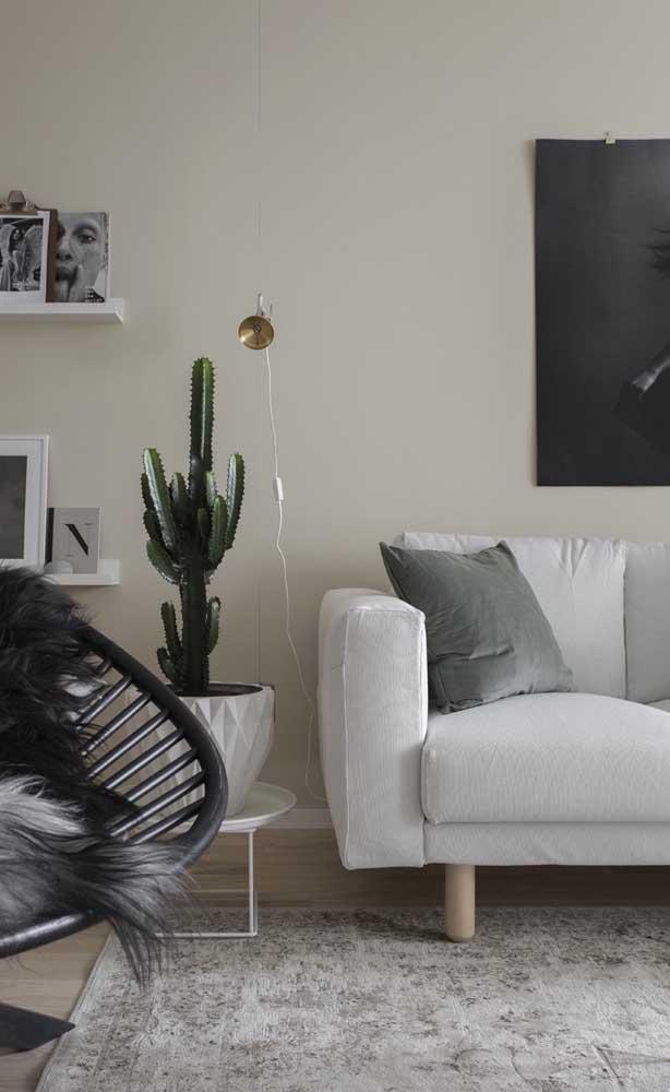 Marfim nas paredes e cinza nos detalhes