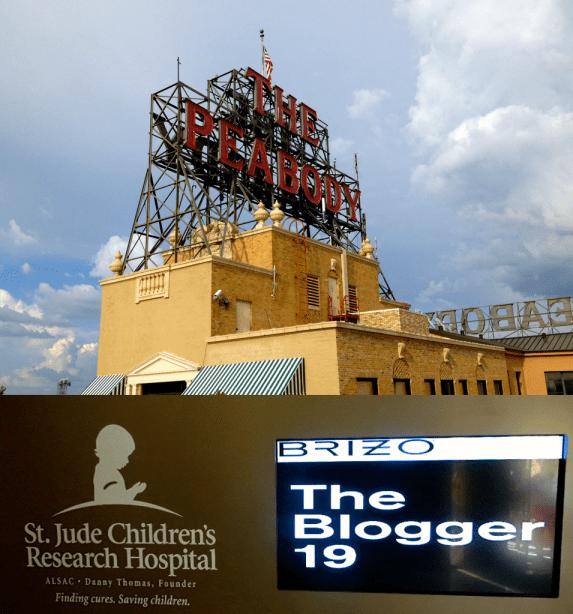 Brizo Blogger 19
