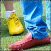 Men's corlorful concour shoe fashions