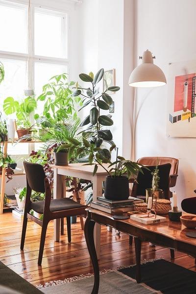 Pomysł na wynajmowane mieszkanie