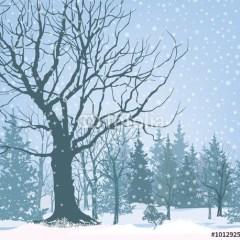 drzewo-w-śniegu-na-tle-lasu-fototapeta