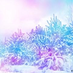 zima-w-lesie-krajobraz