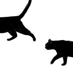 śmieszne-koty-minimalistyczne-dekoracje