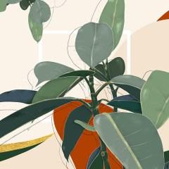 Kolekcja-autorska-inspiredspace-figowiec-obraz-na-ścianę