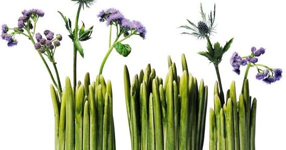 Vase pas cher - Ma sélection de vase à petits prix Karen Kjældgård-Larsen Tine Broksø studio Claydies vase Grass