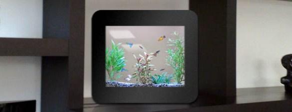 Philippe Couzinier aquariums design