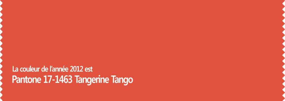 Couleur de l'année 2012 Pantone 17-1463 Tangerine Tango
